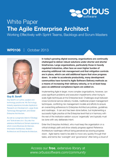 The Agile Enterprise Architect