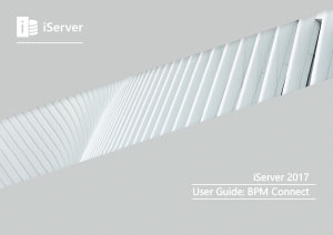 iServer 2017 User Guide: BPM Connect (Module 13)