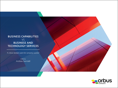 Business Services Vs Capabilities - A critical decision point for company success