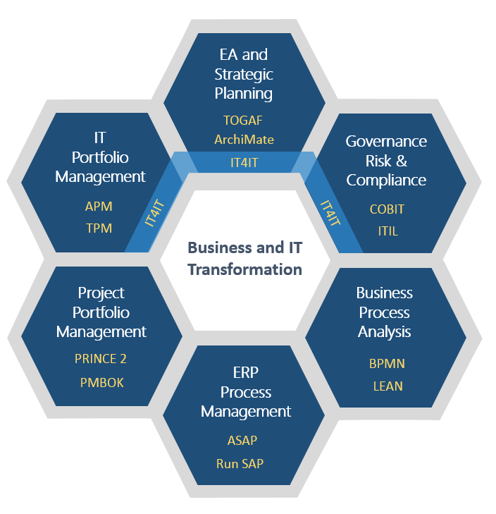 Business and IT Transformation standards